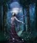 Feeën en Elven