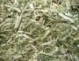 Kruiden Engelstalig Herbs English names