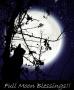 De maan regeert het leven