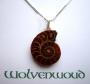 Ketting met Schots slangen amulet (zilver)